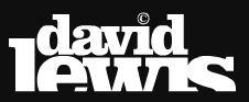 David Lewis o Armin Only